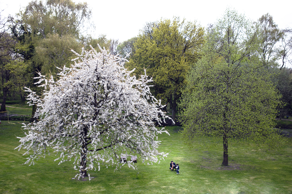 Hochzeit-Patzwaldt-114-10x15cm